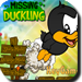 Use the ducking and other stones to rescue the duck, which is trapped inside the wooden and iron bar.