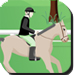 Use space button to jump and the front and back key to slow/increase your horse speed